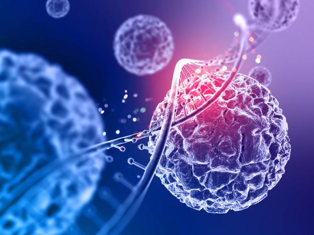 زرع الخلايا الجذعية  تلعب دورًا مهمًا في مكافحة سرطان الدم